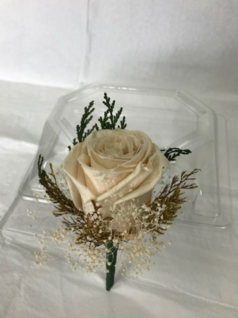 WFP 411  Preserved Champagne Rose Boutonniere
