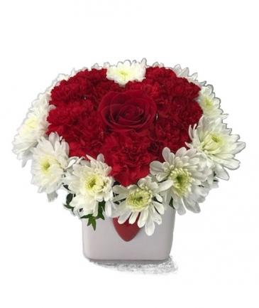 WFV 104 One Heart One Love