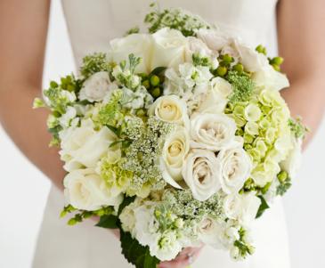 Whispers Of Elegance White Garden Flowers