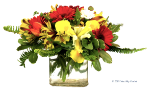 Whispy Wonder Floral Arrangement in Colusa, CA | Richie's Florist