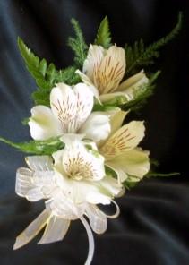 White Alstroemeria Corsage Corsage