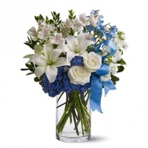 White and Blue Vased Flowers New  Baby