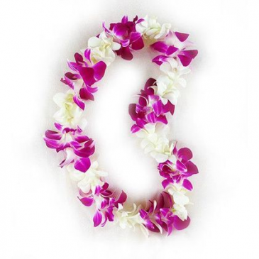 white and purple orchid leis