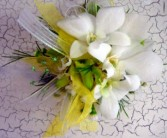 White as snow orchid wrist corsage