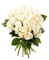 White Beauty Bouquet