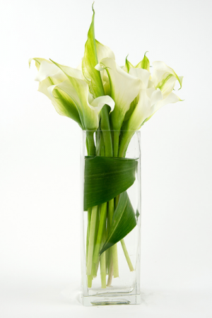 White Calla Lily Rectangle Vase