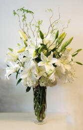 White Casablanca Sympathy Arrangement