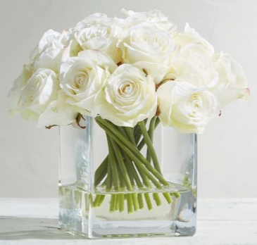 WHITE COLLECTION  12 WHITE ROSES