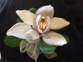 White cymbidium orchid Prom corsage