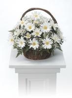 White daisy basket basket