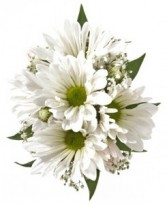 White Daisy Wrist Corsage FHF-401 ****Pick up only****