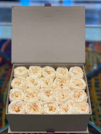 White David Austin Forever Roses /Call First 24 hours in advance order
