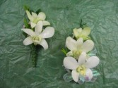 White Dendrobium Corsage And Boutonniere
