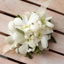 White dendrobium orchids wrist corsage Corsage
