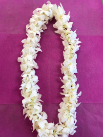 White Double Orchid Lei ORCHID LEI