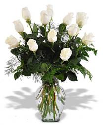 White Dozen Rose Arrangement Roses