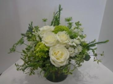 White Elegance Signature Design