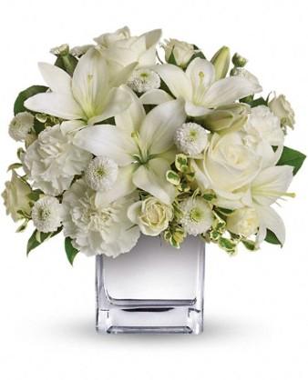 White Elegance Fresh Flowers