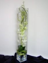 White Elegance Vase