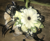 White Gerber Daisy with black and gold  wrist corsage