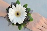 White Gerbera Daisy Corsage Corsage