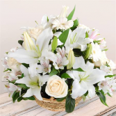 White Grace Arrangement