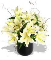 WHITE LILY  SPRING  CENTERPIECE