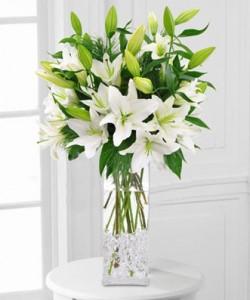 White Lily Vase Elegant Vased Arrangement