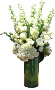 White Melody Cut Flowers