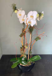 WHITE ORCHID ELEGANT MIXTURE OF FLOWERS