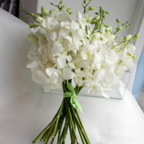 White Orchid Hand Tied Bouquet