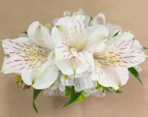 White Peruvian Lily Corsage