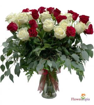 36 White & Red Roses Roses Arrangement in Miami, FL | FLOWERTOPIA