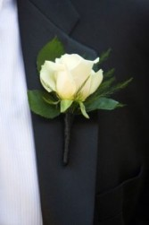 White Rose Boutonniere  with greens and ribbon tie