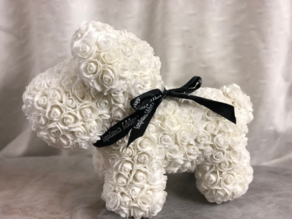 White Rose Dog