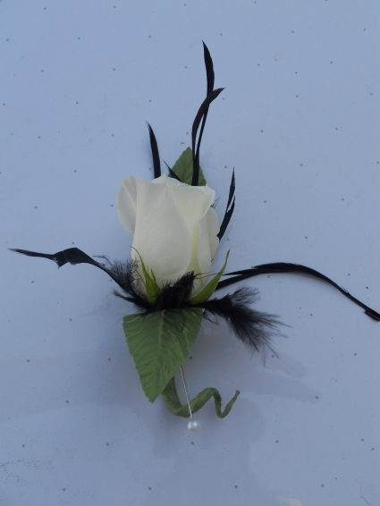 White Rose with Black Feathers