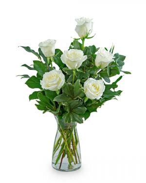 White Roses (6) Flower Arrangement in Nevada, IA | Flower Bed
