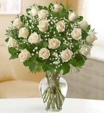 White Roses, Purest Love 12, 18 or 24 Roses.