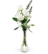 White roses - 947 Vase arrangement