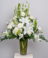 White sympathy Arrangements