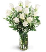White twelve roses  Vase arrangement