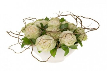 WHITE WILLOW ROSE DESIGN