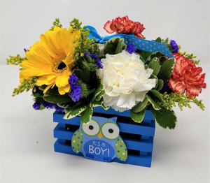 Whooooos the Cutest Baby Boy Arrangement in Springfield, MO | FLOWERAMA #226