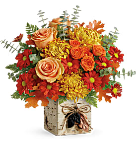 Wild Autumn Bouquet Teleflora in Springfield, IL   FLOWERS BY MARY LOU INC
