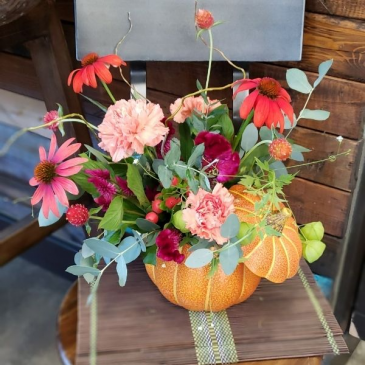 Wild Autumn Flowers for All Occasions