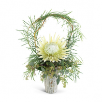 Wild Child Protea Arrangement