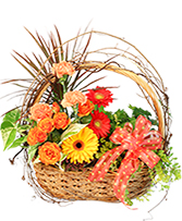 Wild Country Basket Flowering Plants