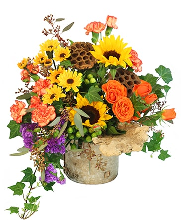 wild ivy floral arrangement in ayer ma pinard s florist gifts