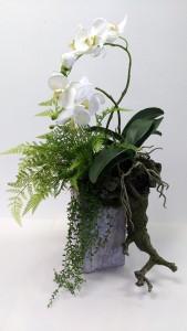 Wild Orchid Design Interior Decor