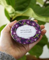 Wild Plum & Cannabis Travel Tin Candle